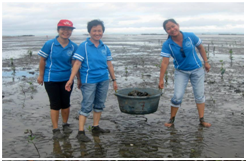 S.I.-employees-go-mangrove-planting1